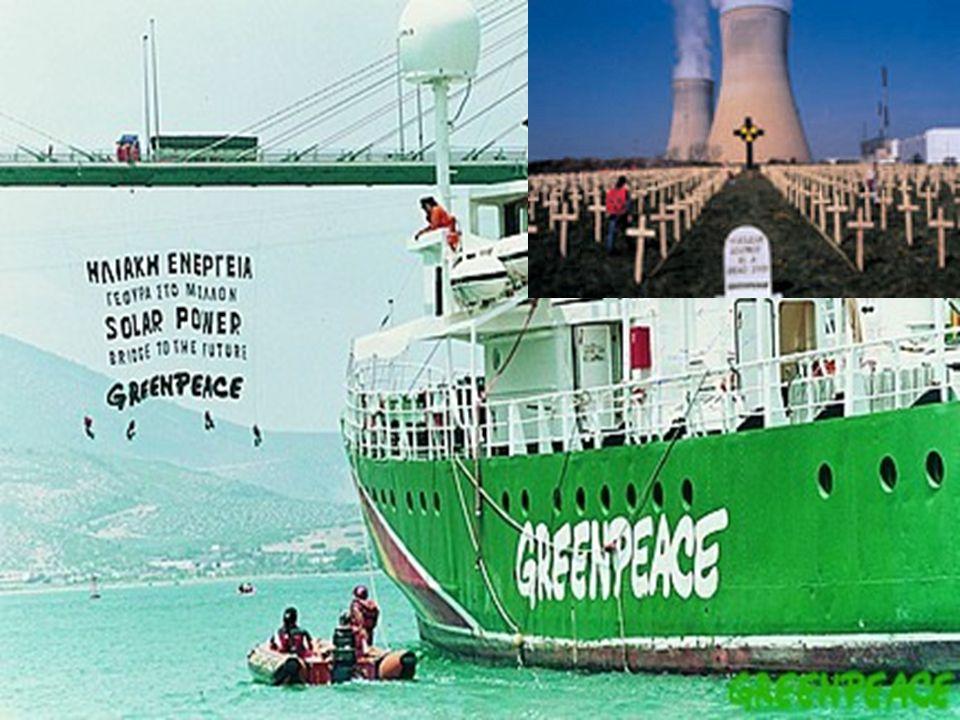 Προκαταρκτική έρευνα της Greenpeace και αποτελέσματα H έρευνα της περιβαλλοντικής ΜΚΟ κατά την περίοδο 1988-1999 έδειξε ότι: Το 50% των επιχειρήσεων που προμήθευσαν ξυλεία στην Eldorado εκμεταλλεύονταν, μετέφεραν ή αποθήκευαν παράνομη ξυλεία Τουλάχιστον 14 από τις εταιρείες προμηθευτές λειτουργούσαν παράνομα καθώς δεν είχαν καταγραφεί από την αρμόδια κυβερνητική περιβαλλοντική υπηρεσία Η διοίκηση της Lapeyre αρνιόταν πεισματικά να συνεργαστεί με την Greenpeace στο πλαίσιο της χάραξης μιας ορθής και αειφορικής χρήσης-εκμετάλλευσης του φυσικού πόρου, δηλαδή των αρχέγονων δασών