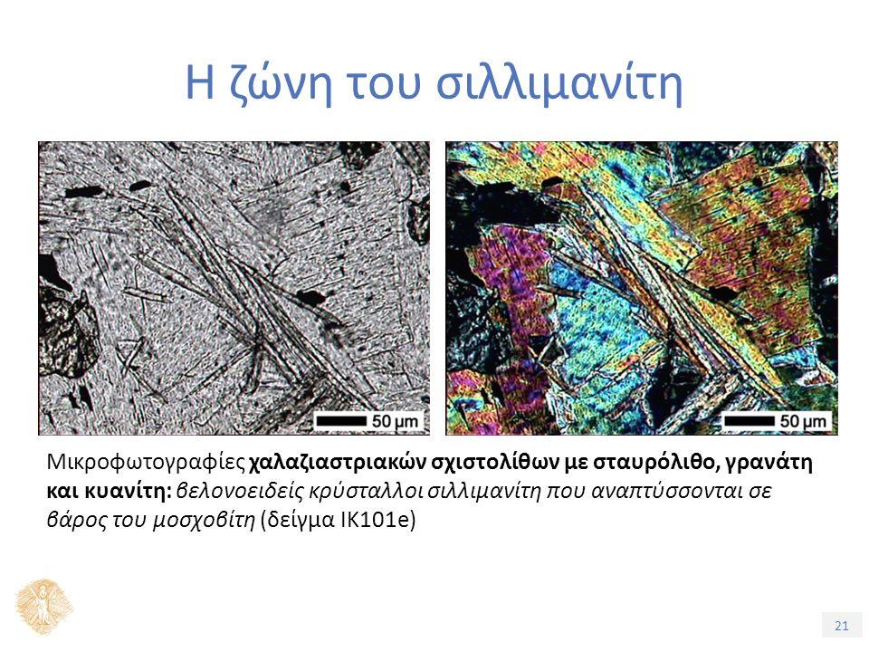 21 Η ζώνη του σιλλιμανίτη Μικροφωτογραφίες χαλαζιαστριακών σχιστολίθων με σταυρόλιθο, γρανάτη και κυανίτη: βελονοειδείς κρύσταλλοι σιλλιμανίτη που αναπτύσσονται σε βάρος του μοσχοβίτη (δείγμα ΙΚ101e)