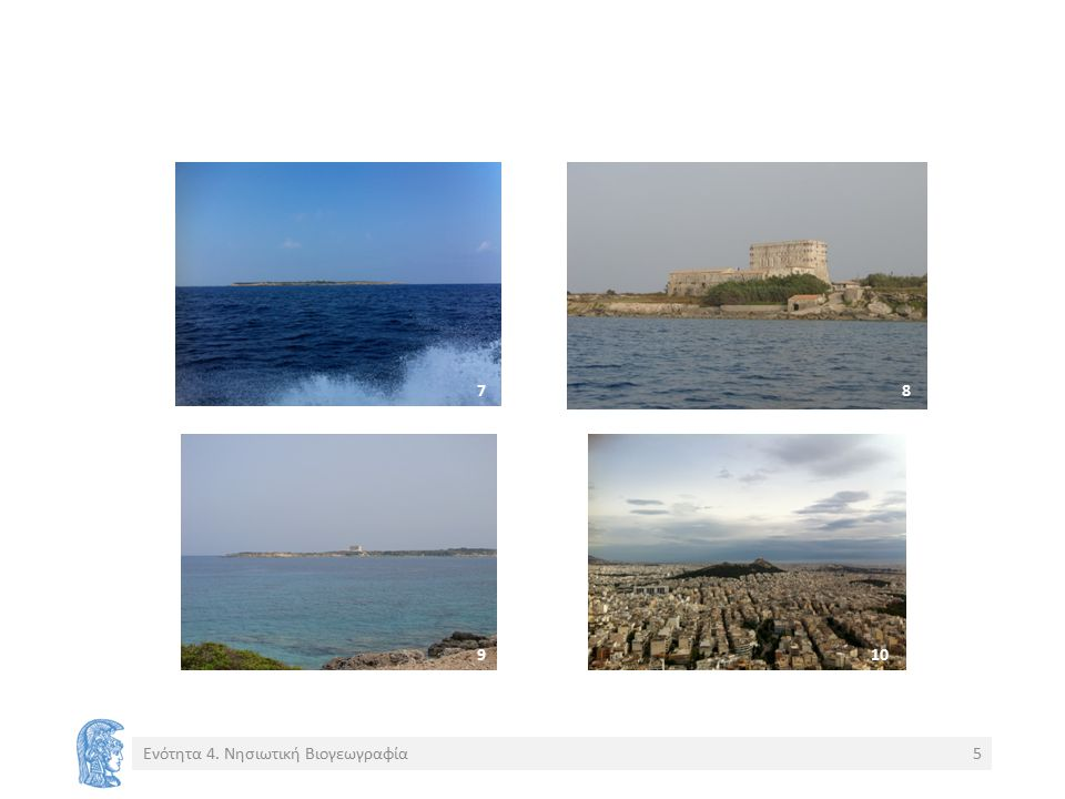 Ωκεάνια vs.ηπειρωτικών νησιών Χαμηλή ποικιλότητα αλλά ισχυρή σχέση επιφάνειας-ειδών.