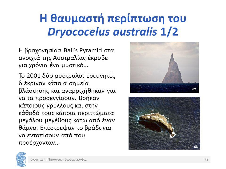 Η θαυμαστή περίπτωση του Dryococelus australis 1/2 Η βραχονησίδα Ball's Pyramid στα ανοιχτά της Αυστραλίας έκρυβε για χρόνια ένα μυστικό...