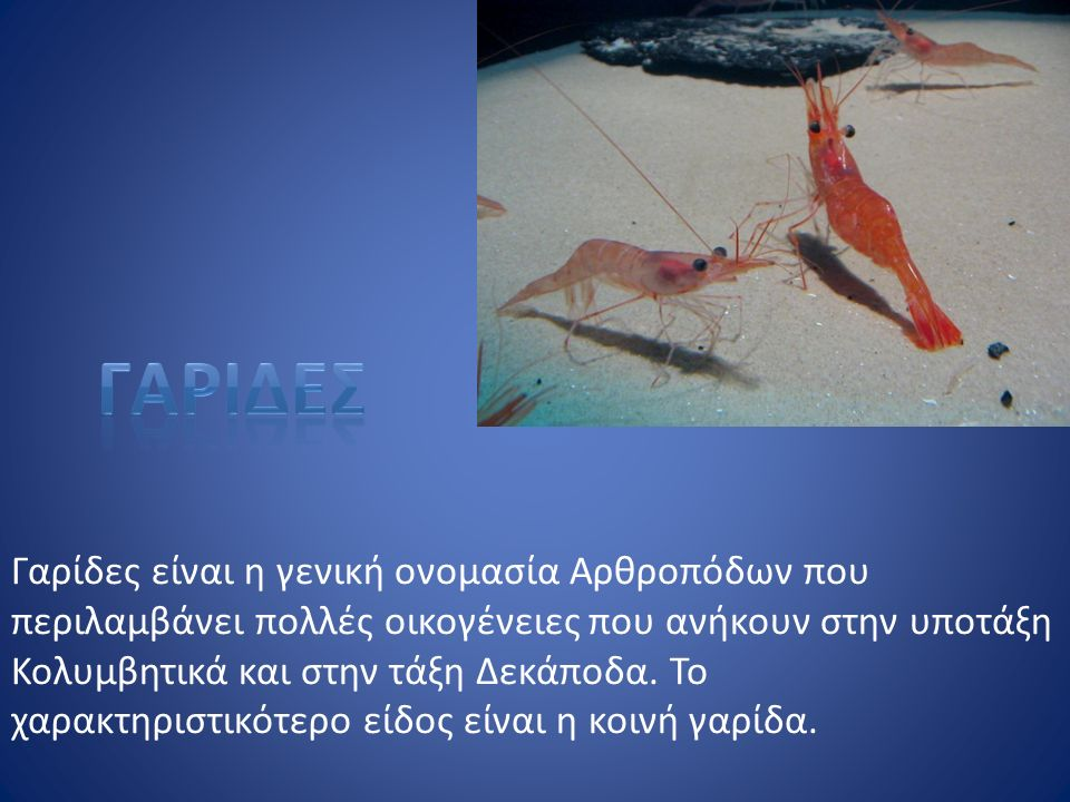 Γαρίδες είναι η γενική ονομασία Αρθροπόδων που περιλαμβάνει πολλές οικογένειες που ανήκουν στην υποτάξη Κολυμβητικά και στην τάξη Δεκάποδα. Το χαρακτη