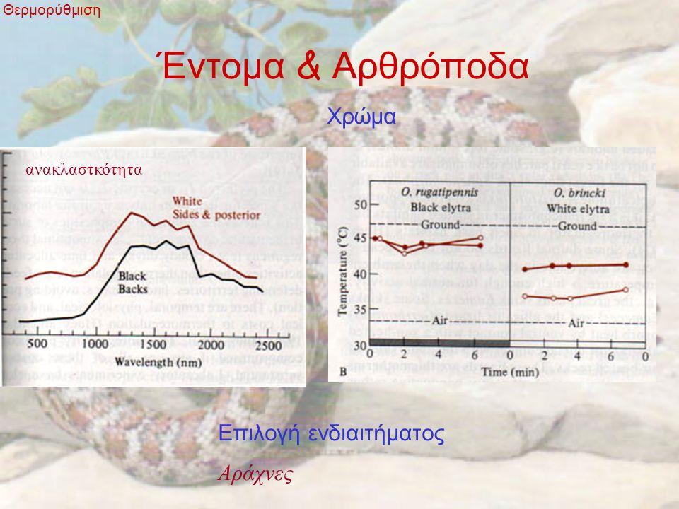 Έντομα & Αρθρόποδα Θερμορύθμιση Χρώμα ανακλαστκότητα Επιλογή ενδιαιτήματος Αράχνες