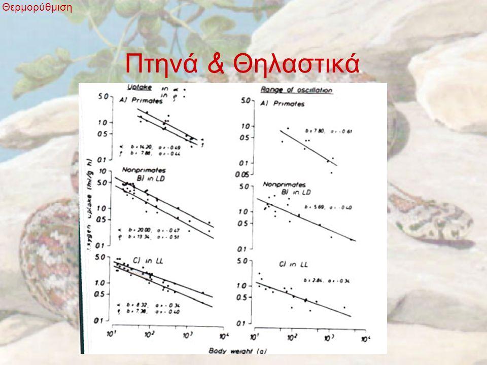 Πτηνά & Θηλαστικά Θερμορύθμιση