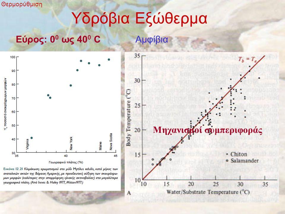 Βιοκλιματικοί κανόνες Θερμορύθμιση Κανόνας του Allen: Τα Ζώα των ψυχρών περιοχών τείνουν να μειώσουν το μέγεθος των άκρων του σώματος Κανόνας του Bergmann: τα ενδόθερμα είναι μεγαλύτερα στα ψυχρά κλίματα