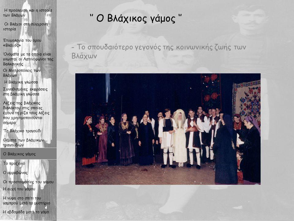 12 '' Ο Βλάχικος γάμος '' - Το σπουδαιότερο γεγονός της κοινωνικής ζωής των Βλάχων Οι Βλάχοι στη σύγχρονη ιστορία Η προέλευση και η ιστορία των Βλάχων Η Βλάχικη γλώσσα Συνηθισμένες εκφράσεις στη βλάχικη γλώσσα Λέξεις της βλάχικης διαλέκτου στις οποίες έχουν τη ρίζα τους λέξεις που χρησιμοποιούνται σήμερα 'Το Βλάχικο τραγούδι Θέματα των βλάχικων τραγουδιών Ο Βλάχικος γάμος Το προξενιό Ο αρραβώνας Οι προετοιμασίες του γάμου Η ευχή του γάμου Η νύφη στο σπίτι του γαμπρού μετά το μυστήριο Η εβδομάδα μετά το γάμο Οι Μητροπόλεις των Βλάχων 'Ονόματα με τα οποία είναι γνωστοί οι Λατινόφωνοι της Βαλκανικής 'Ετυμολογία του όρου «Βλάχος»