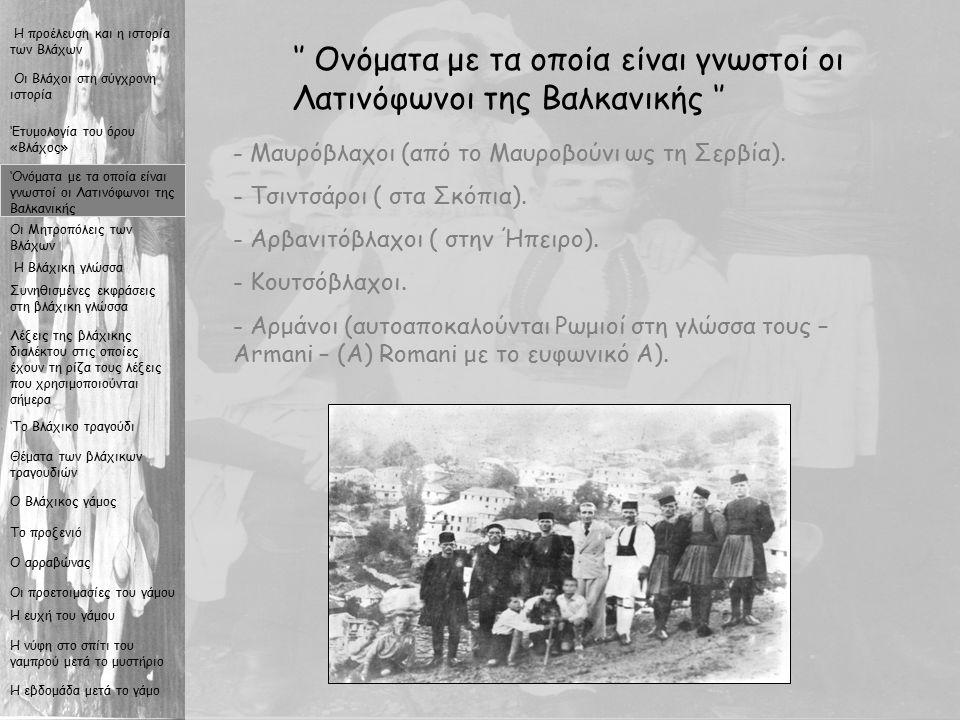 6 '' Οι Μητροπόλεις των Βλάχων '' Η προέλευση και η ιστορία των Βλάχων Η Βλάχικη γλώσσα Συνηθισμένες εκφράσεις στη βλάχικη γλώσσα Λέξεις της βλάχικης διαλέκτου στις οποίες έχουν τη ρίζα τους λέξεις που χρησιμοποιούνται σήμερα 'Το Βλάχικο τραγούδι Θέματα των βλάχικων τραγουδιών Ο Βλάχικος γάμος Το προξενιό Ο αρραβώνας Οι προετοιμασίες του γάμου Η ευχή του γάμου Η νύφη στο σπίτι του γαμπρού μετά το μυστήριο Η εβδομάδα μετά το γάμο Οι Βλάχοι στη σύγχρονη ιστορία 'Ονόματα με τα οποία είναι γνωστοί οι Λατινόφωνοι της Βαλκανικής 'Ετυμολογία του όρου «Βλάχος» Οι Μητροπόλεις των Βλάχων Τα βλαχοχώρια του Ασπροποτάμου (Τρίκαλα, Καλαμπάκα) Τα βλαχοχώρια του Μαλακασίου (νομός Ιωαννίνων) Οι βλάχοι του Ζαγοριού και της Κόνιτσας Οι βλάχοι της Β.Πίνδου και τα βλαχοχώρια των Γρεβενών Οι βλάχοι του Γράμμου (σήμερα ζουν μόνιμα στο Άργος Ορεστικό) Οι βλάχοι της Βέροιας - Βέρμιο Οι βλάχοι της βορειοδυτικής Μακεδονίας Οι βλάχοι της Μοσχόπολης