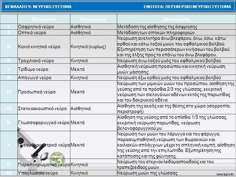 ΚΕΦΑΛΑΙΟ 9: ΝΕΥΡΙΚΟ ΣΥΣΤΗΜΑ ΕΝΟΤΗΤΑ: ΠΕΡΙΦΕΡΙΚΟ ΝΕΥΡΙΚΟ ΣΥΣΤΗΜΑ ΟνομασίαΚατηγορίαΛειτουργία ΙΟσφρητικό νεύροΑισθητικόΜετάδοση της αίσθησης της όσφρησης ΙΙΟπτικό νεύροΑισθητικόΜετάδοση των οπτικών πληροφοριών ΙΙΙΚοινό κινητικό νεύροΚινητικό (κυρίως) Νεύρωση ανελκτήρα άνω βλεφάρου, άνω, έσω, κάτω ορθού και κάτω λοξού μυών του οφθαλμικού βολβού.