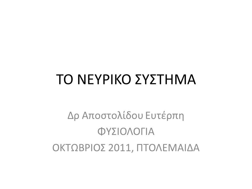ΤΟ ΝΕΥΡΙΚΟ ΣΥΣΤΗΜΑ Δρ Αποστολίδου Ευτέρπη ΦΥΣΙΟΛΟΓΙΑ ΟΚΤΩΒΡΙΟΣ 2011, ΠΤΟΛΕΜΑΙΔΑ
