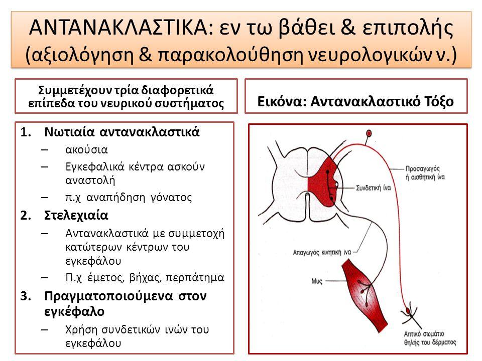 ΑΝΤΑΝΑΚΛΑΣΤΙΚΑ: εν τω βάθει & επιπολής (αξιολόγηση & παρακολούθηση νευρολογικών ν.) Συμμετέχουν τρία διαφορετικά επίπεδα του νευρικού συστήματος 1.Νωτ