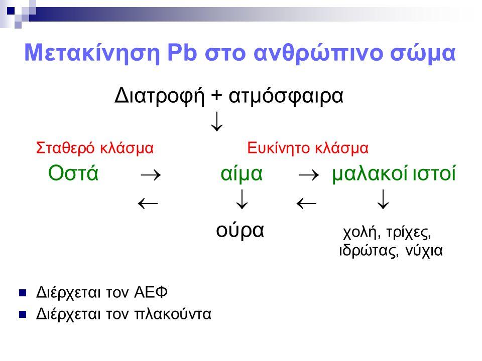 Μετακίνηση Pb στο ανθρώπινο σώμα Διατροφή + ατμόσφαιρα  Σταθερό κλάσμα Ευκίνητο κλάσμα Οστά  αίμα  μαλακοί ιστοί     ούρα χολή, τρίχες, ιδρώτας, νύχια Διέρχεται τον ΑΕΦ Διέρχεται τον πλακούντα
