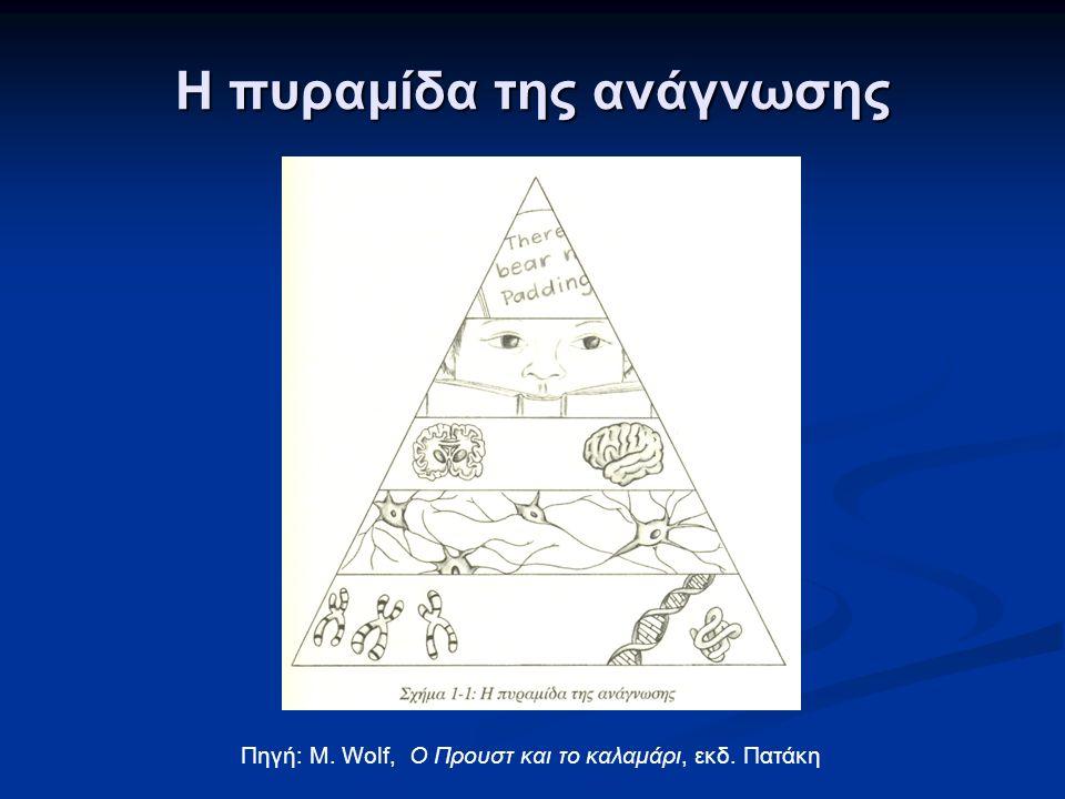 Η πυραμίδα της ανάγνωσης Πηγή: M. Wolf, Ο Προυστ και το καλαμάρι, εκδ. Πατάκη