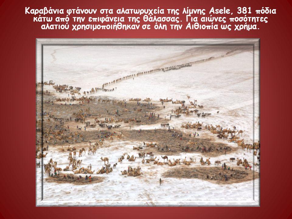 Καραβάνια φτάνουν στα αλατωρυχεία της λίμνης Asele, 381 πόδια κάτω από την επιφάνεια της θάλασσας. Για αιώνες ποσότητες αλατιού χρησιμοποιήθηκαν σε όλ