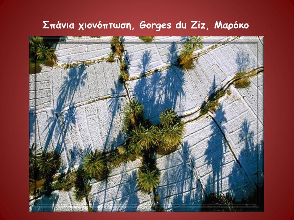 Σπάνια χιονόπτωση, Gorges du Ziz, Μαρόκο