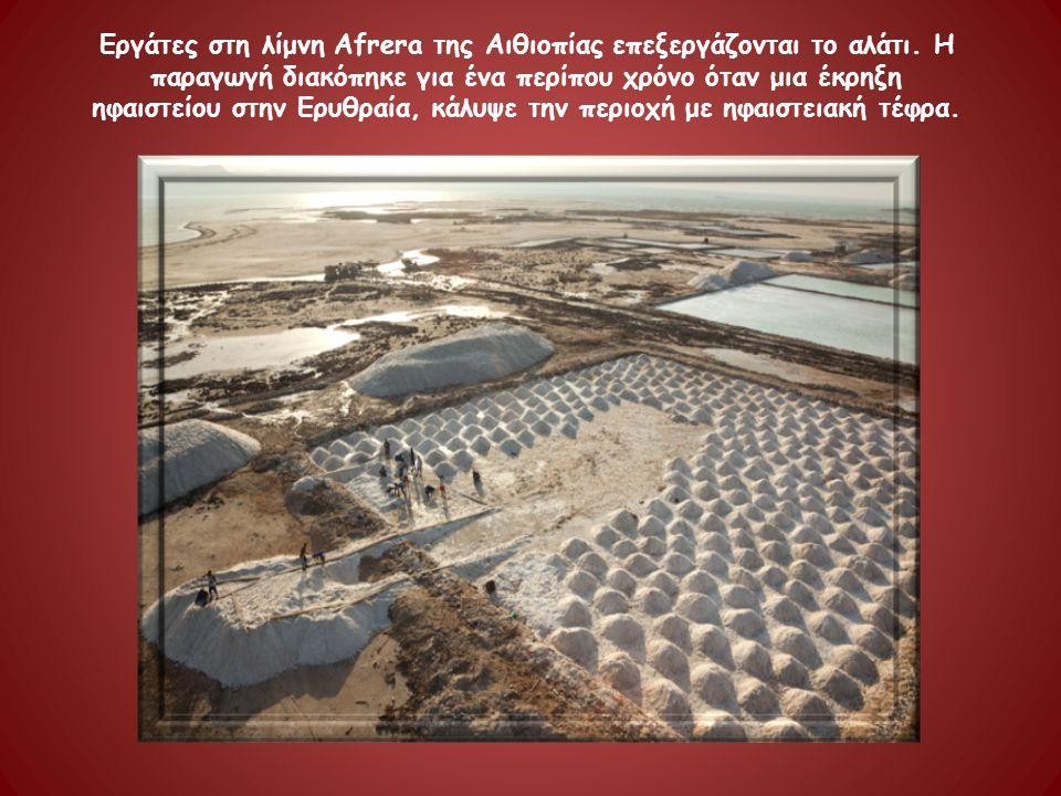 Εργάτες στη λίμνη Afrera της Αιθιοπίας επεξεργάζονται το αλάτι. Η παραγωγή διακόπηκε για ένα περίπου χρόνο όταν μια έκρηξη ηφαιστείου στην Ερυθραία, κ