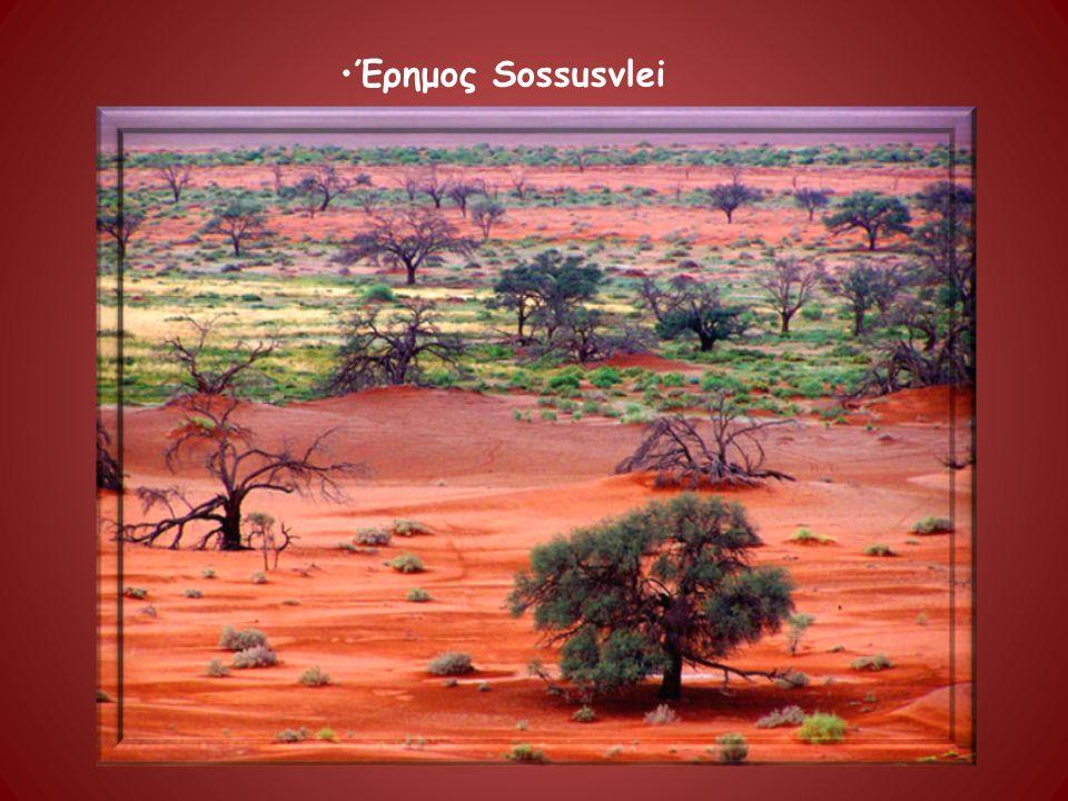 Έρημος Sossusvlei
