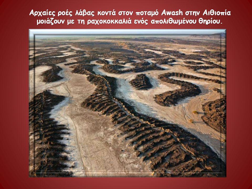 Αρχαίες ροές λάβας κοντά στον ποταμό Awash στην Αιθιοπία μοιάζουν με τη ραχοκοκκαλιά ενός απολιθωμένου θηρίου.