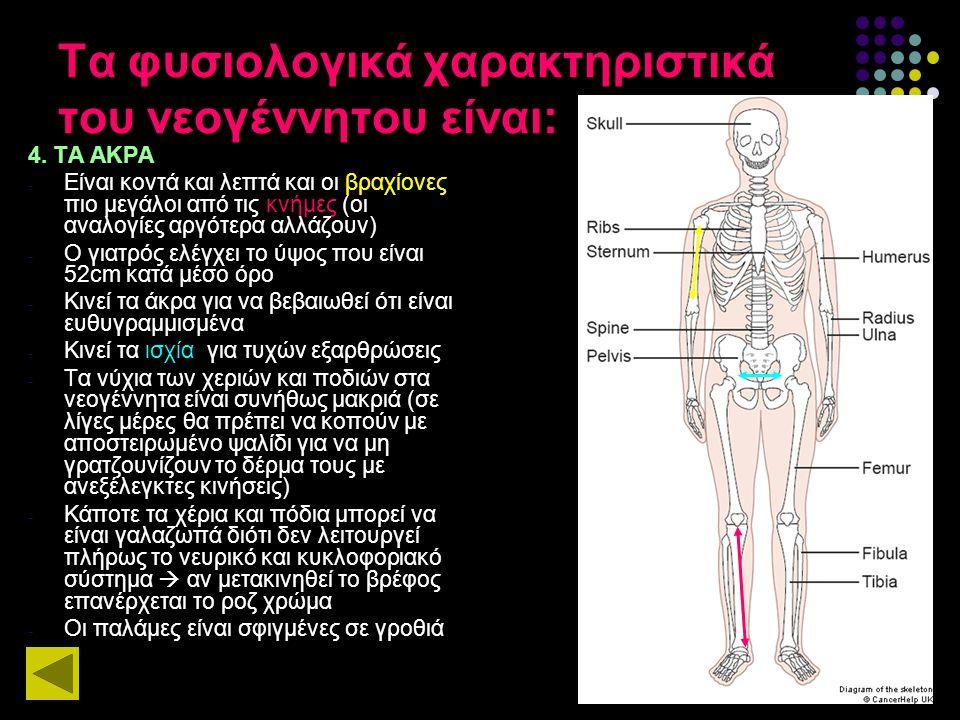 Τα φυσιολογικά χαρακτηριστικά του νεογέννητου είναι: 4. ΤΑ ΑΚΡΑ - Είναι κοντά και λεπτά και οι βραχίονες πιο μεγάλοι από τις κνήμες (οι αναλογίες αργό