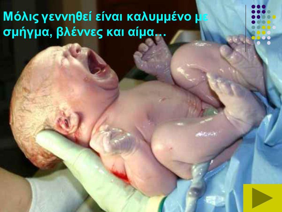Μόλις γεννηθεί είναι καλυμμένο με σμήγμα, βλέννες και αίμα…