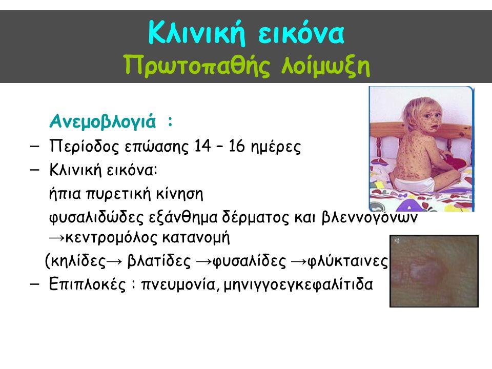 Κλινική εικόνα Πρωτοπαθής λοίμωξη Ανεμοβλογιά : – Περίοδος επώασης 14 – 16 ημέρες – Κλινική εικόνα: ήπια πυρετική κίνηση φυσαλιδώδες εξάνθημα δέρματος και βλεννογόνων → κεντρομόλος κατανομή (κηλίδες → βλατίδες → φυσαλίδες → φλύκταινες ) – Επιπλοκές : πνευμονία, μηνιγγοεγκεφαλίτιδα