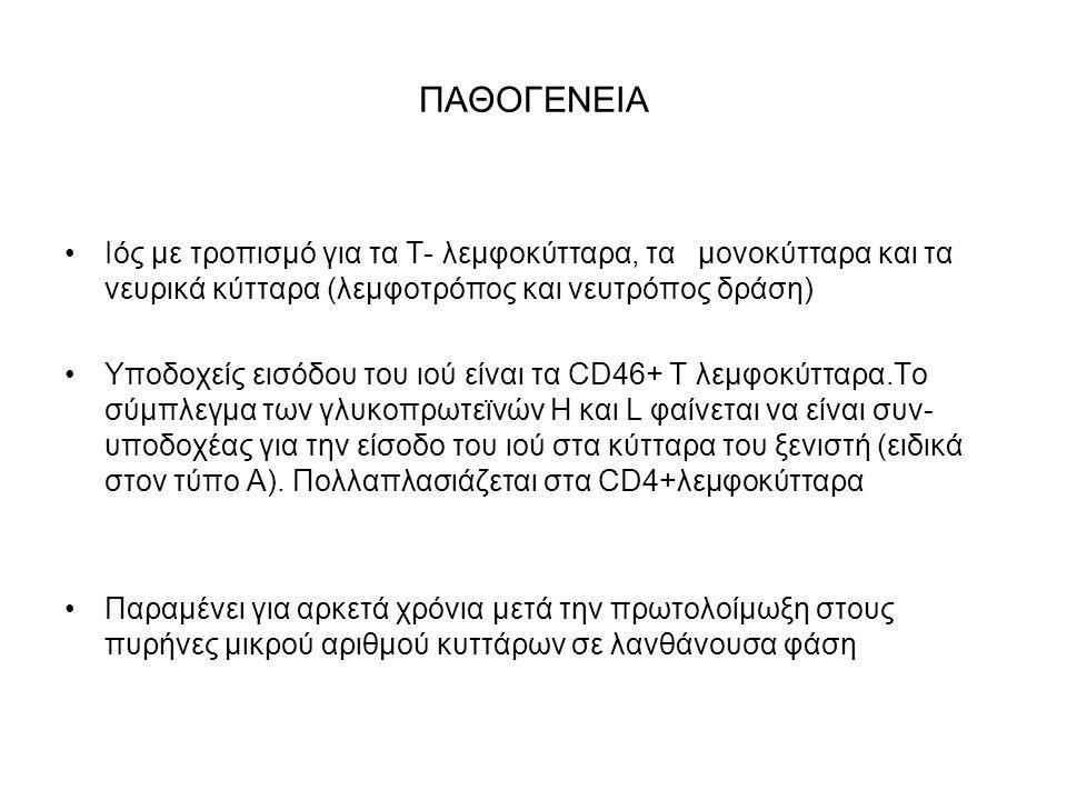 ΠΑΘΟΓΕΝΕΙΑ Ιός με τροπισμό για τα Τ- λεμφοκύτταρα, τα μονοκύτταρα και τα νευρικά κύτταρα (λεμφοτρόπος και νευτρόπος δράση) Υποδοχείς εισόδου του ιού είναι τα CD46+ Τ λεμφοκύτταρα.Το σύμπλεγμα των γλυκοπρωτεϊνών H και L φαίνεται να είναι συν- υποδοχέας για την είσοδο του ιού στα κύτταρα του ξενιστή (ειδικά στον τύπο Α).