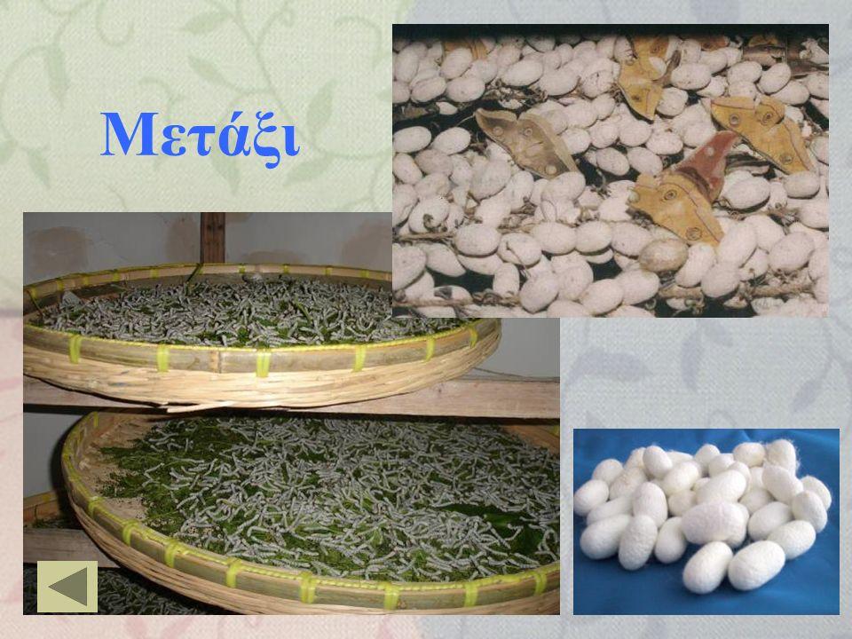 Μαλλί http://www.elegantlinenspc.com/victoria.gif