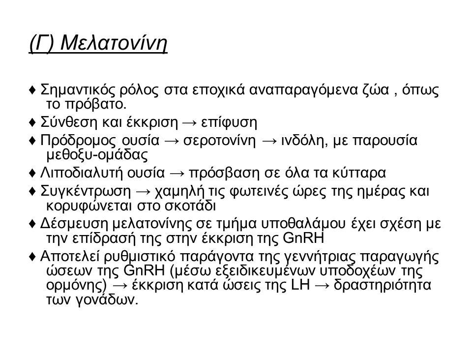 (Γ) Μελατονίνη ♦ Σημαντικός ρόλος στα εποχικά αναπαραγόμενα ζώα, όπως το πρόβατο.