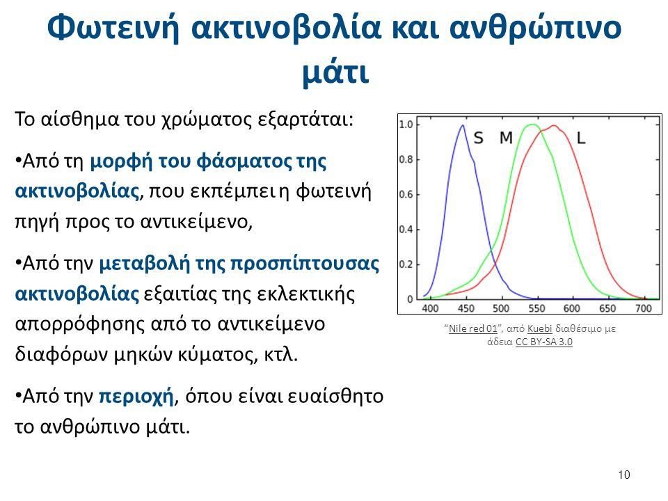 Φωτεινή ακτινοβολία και ανθρώπινο μάτι Το αίσθημα του χρώματος εξαρτάται: Από τη μορφή του φάσματος της ακτινοβολίας, που εκπέμπει η φωτεινή πηγή προς