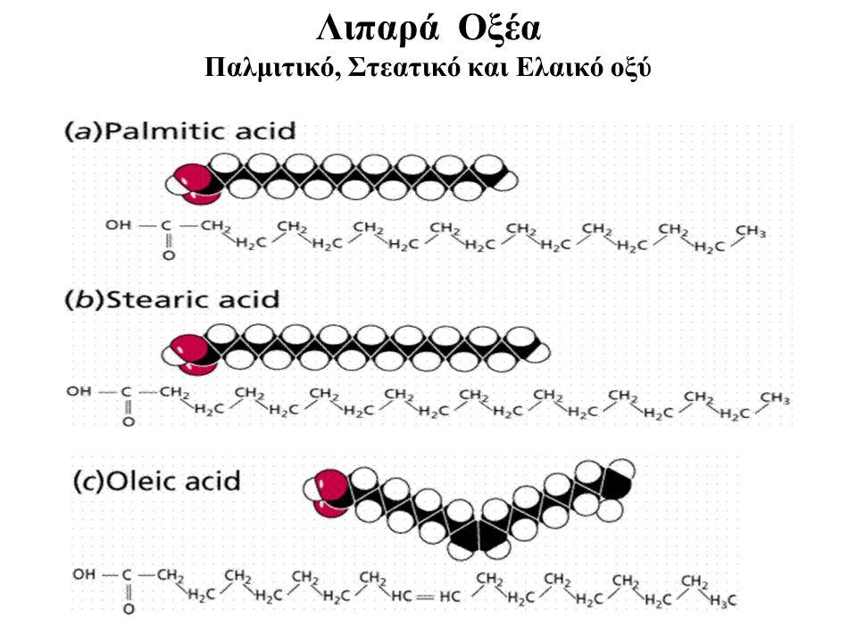 Λιπαρά Οξέα Παλμιτικό, Στεατικό και Ελαικό οξύ