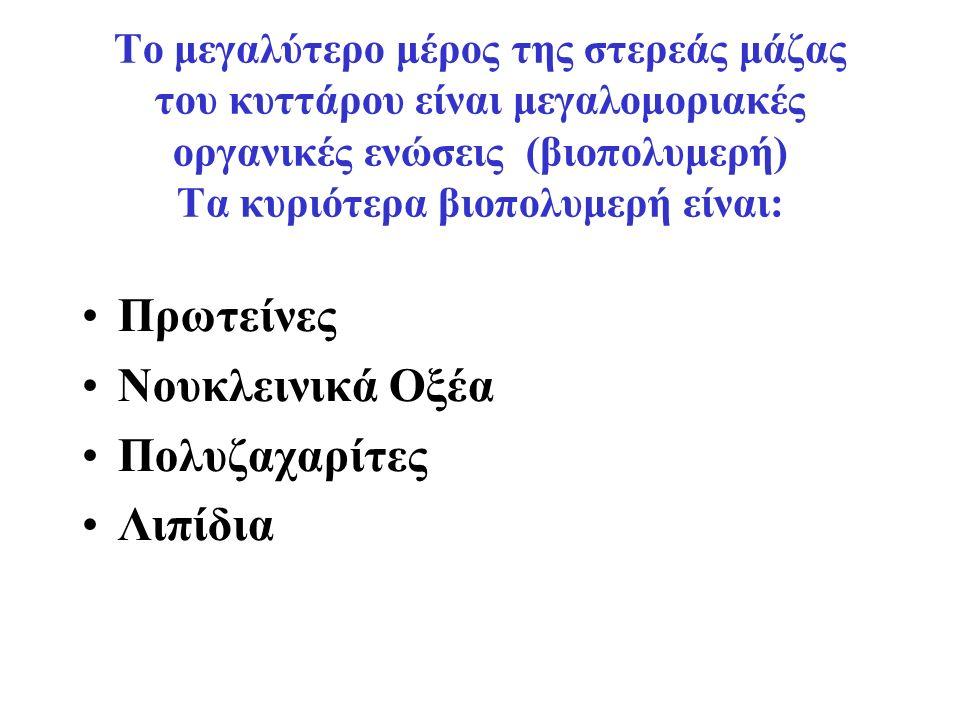 Οι Δομικές Μονάδες των βιοπολυμερών είναι Λίγες και Απλές Οργανικές ενώσεις ΒΙΟΠΟΛΥΜΕΡΕΣ Δομικές Μονάδες ΠΡΩΤΕΙΝΕΣ ( 20 Αμινοξέα ) ΝΟΥΚΛΕΙΝΙΚΑ ΟΞΕΑ (8 Νουκλεοτίδια) ΠΟΛΥΖΑΧΑΡΙΤΕΣ (Μονοζαχαρίτες) ΛΙΠΙΔΙΑ (Λιπαρά Οξέα+ Γλυκερίνη)