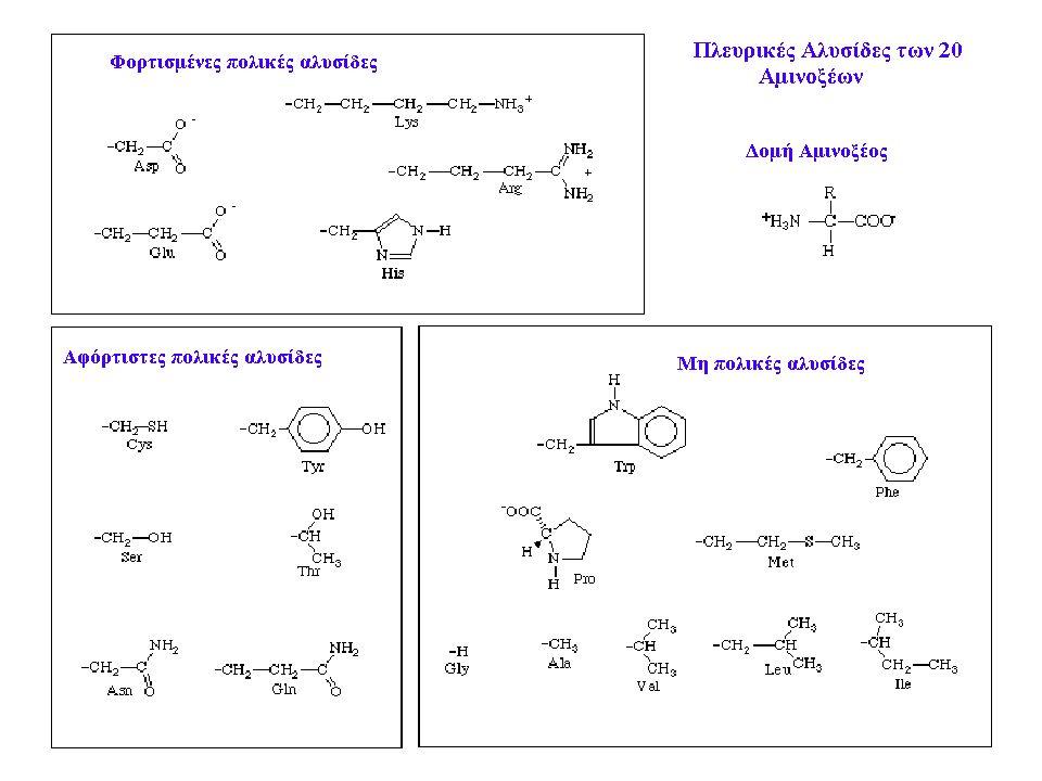 Tριγλυκερίδια Εστέρες της γλυκερίνης με λιπαρά οξέα Βασική λειτουργία : Αποθήκευση ενέργειας