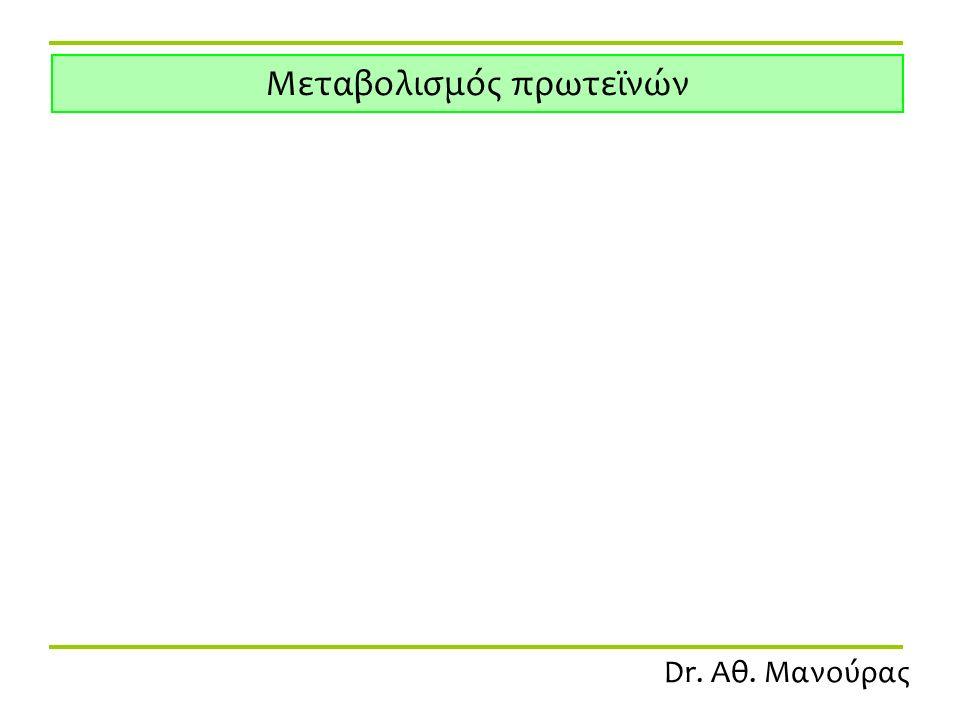 Dr. Αθ. Μανούρας Μεταβολισμός πρωτεϊνών
