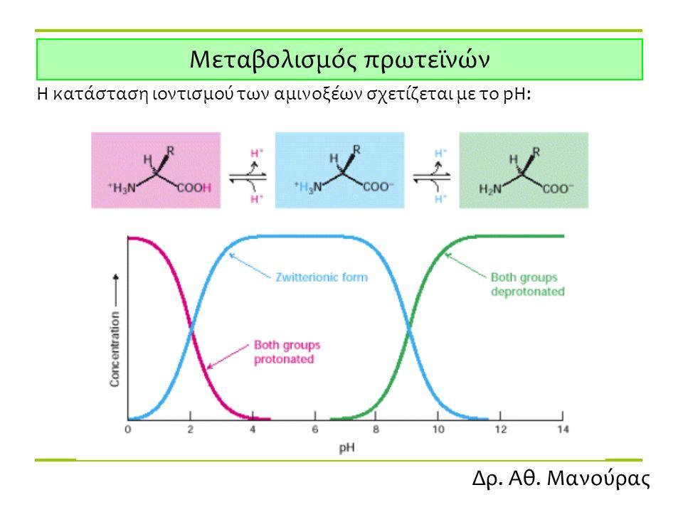Δρ. Αθ. Μανούρας Μεταβολισμός πρωτεϊνών Η κατάσταση ιοντισμού των αμινοξέων σχετίζεται με το pH: