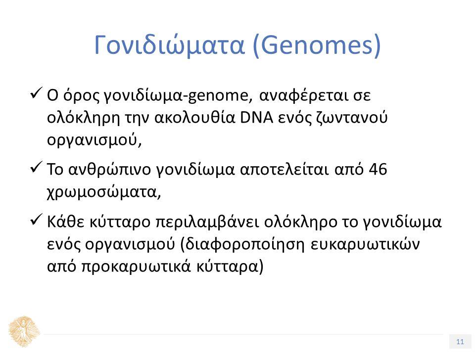 11 Τίτλος Ενότητας Γονιδιώματα (Genomes) Ο όρος γονιδίωµα-genome, αναφέρεται σε ολόκληρη την ακολουθία DNA ενός ζωντανού οργανισµού, Το ανθρώπινο γονιδίωµα αποτελείται από 46 χρωµοσώµατα, Κάθε κύτταρο περιλαµβάνει ολόκληρο το γονιδίωµα ενός οργανισµού (διαφοροποίηση ευκαρυωτικών από προκαρυωτικά κύτταρα)