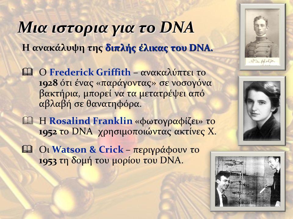 Μια ιστορια για το DNA H ανακάλυψη της δ δδ διπλής έλικας του DNA.  Ο Frederick Griffith – ανακαλύπτει το 1928 ότι ένας «παράγοντας» σε νοσογόνα βακτ
