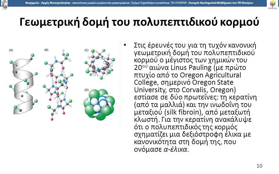 1010 Βιοχημεία - Αρχές Βιοτεχνολογίας - απεικόνιση μικρών μορίων και μακρομορίων, Τμήμα Τεχνολόγων γεωπόνων, ΤΕΙ ΗΠΕΙΡΟΥ - Ανοιχτά Ακαδημαϊκά Μαθήματα στο ΤΕΙ Ηπείρου Γεωμετρική δομή του πολυπεπτιδικού κορμού Στις έρευνές του για τη τυχόν κανονική γεωμετρική δομή του πολυπεπτιδικού κορμού ο μέγιστος των χημικών του 20 ού αιώνα Linus Pauling (με πρώτο πτυχίο από το Oregon Agricultural College, σημερινό Oregon State University, στο Corvalis, Oregon) εστίασε σε δύο πρωτεΐνες: τη κερατίνη (από τα μαλλιά) και την ινωδοΐνη του μεταξιού (silk fibroin), από μεταξωτή κλωστή.