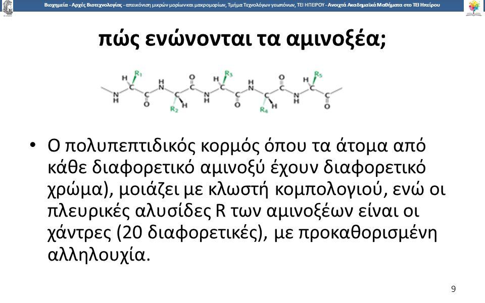9 Βιοχημεία - Αρχές Βιοτεχνολογίας - απεικόνιση μικρών μορίων και μακρομορίων, Τμήμα Τεχνολόγων γεωπόνων, ΤΕΙ ΗΠΕΙΡΟΥ - Ανοιχτά Ακαδημαϊκά Μαθήματα στο ΤΕΙ Ηπείρου πώς ενώνονται τα αμινοξέα; Ο πολυπεπτιδικός κορμός όπου τα άτομα από κάθε διαφορετικό αμινοξύ έχουν διαφορετικό χρώμα), μοιάζει με κλωστή κομπολογιού, ενώ οι πλευρικές αλυσίδες R των αμινοξέων είναι οι χάντρες (20 διαφορετικές), με προκαθορισμένη αλληλουχία.