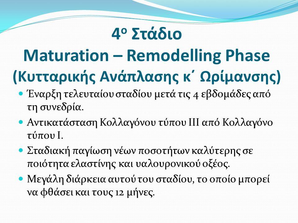 4 ο Στάδιο Maturation – Remodelling Phase (Κυτταρικής Ανάπλασης κ΄ Ωρίμανσης) Έναρξη τελευταίου σταδίου μετά τις 4 εβδομάδες από τη συνεδρία.