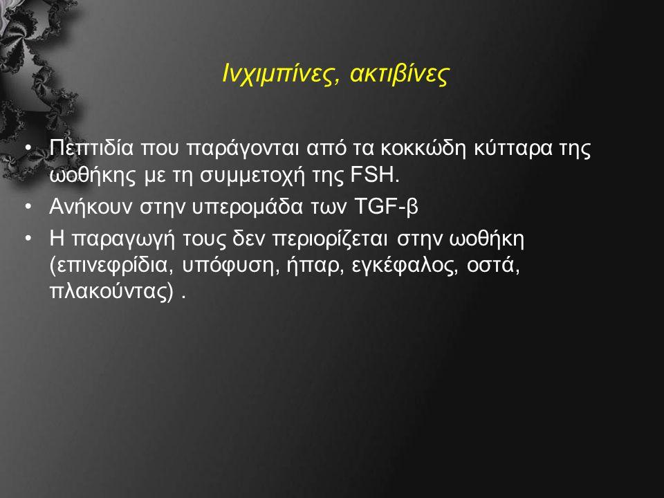 Ινχιμπίνες, ακτιβίνες Πεπτιδία που παράγονται από τα κοκκώδη κύτταρα της ωοθήκης με τη συμμετοχή της FSH.