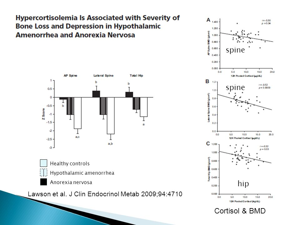 Cortisol & BMD Healthy controls Hypothalamic amenorrhea Anorexia nervosa spine hip spine