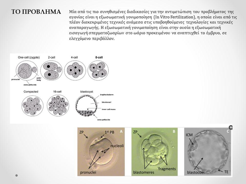 ΤΟ ΠΡΟΒΛΗΜΑ Μία από τις πιο συνηθισμένες διαδικασίες για την αντιμετώπιση του προβλήματος της αγονίας είναι η εξωσωματική γονιμοποίηση (In Vitro Fertilization), η οποία είναι από τις πλέον διακεκριμένες τεχνικές ανάμεσα στις υποβοηθούμενες τεχνολογίες και τεχνικές αναπαραγωγής.