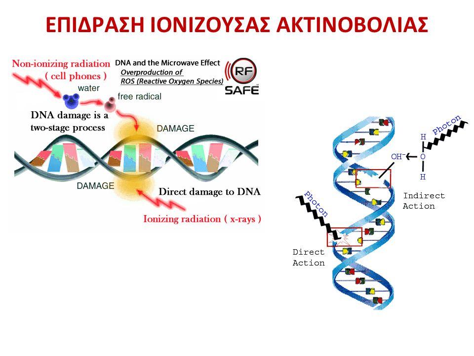 Ποια είναι τα στάδια της ογκογένεσης; Ποιο παράγοντες θεωρούνται καρκινογόνοι; Ποιος ο μηχανισμός δράσης καθενός από αυτούς (επιγραμματικά) Τι είναι τα ογκοκατασταλτικά και τι τα ογκογονίδια; Με ποιους μηχανισμούς μπορεί να «δημιουργηθεί» ένα ογκογονίδιο; Τι είναι η γονιδιακή ενίσχυση και πώς συμμετέχει στην ογκογένεση; Τι είναι το χρωμόσωμα της Φιλαδέλφειας και πώς εμπλέκεται σε λευχαιμίες; Ποια η δράση της πρωτεΐνης Rb; Τι λέει η θεωρία των πολλαπλών χτυπημάτων για την ογκογένεση; Ποια είναι τα στάδια της μετάστασης;