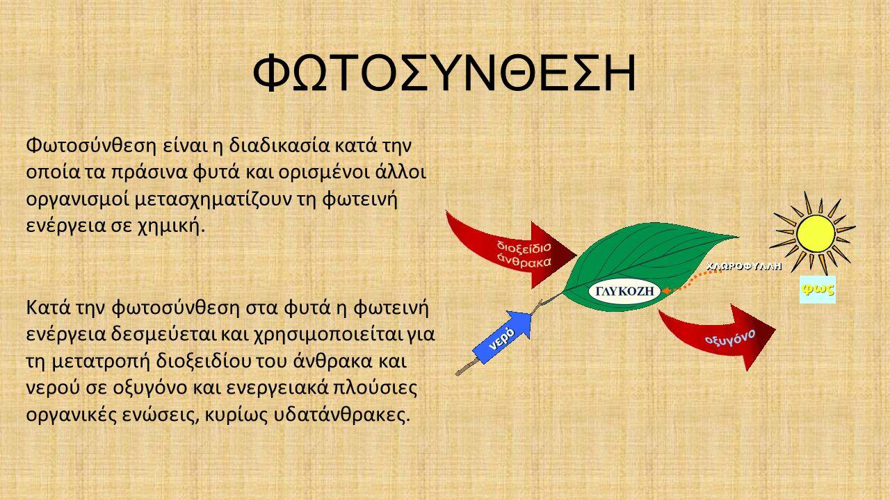 ΦΩΤΟΣΥΝΘΕΣΗ Φωτοσύνθεση είναι η διαδικασία κατά την οποία τα πράσινα φυτά και ορισμένοι άλλοι οργανισμοί μετασχηματίζουν τη φωτεινή ενέργεια σε χημική.