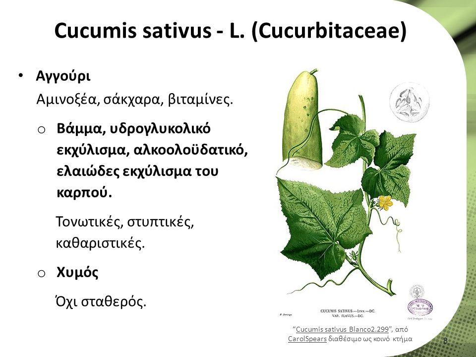 Cucumis sativus - L. (Cucurbitaceae) Αγγούρι Αμινοξέα, σάκχαρα, βιταμίνες.