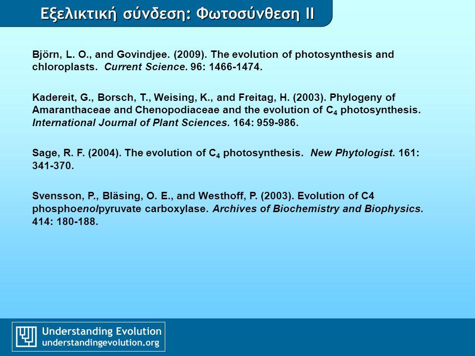 Εξελικτική σύνδεση: Φωτοσύνθεση II Björn, L.O., and Govindjee.