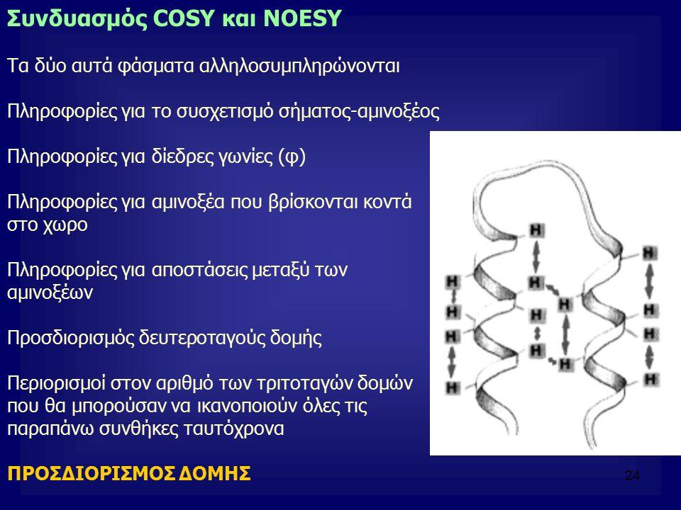 24 Συνδυασμός COSY και NOESY Τα δύο αυτά φάσματα αλληλοσυμπληρώνονται Πληροφορίες για το συσχετισμό σήματος-αμινοξέος Πληροφορίες για δίεδρες γωνίες (