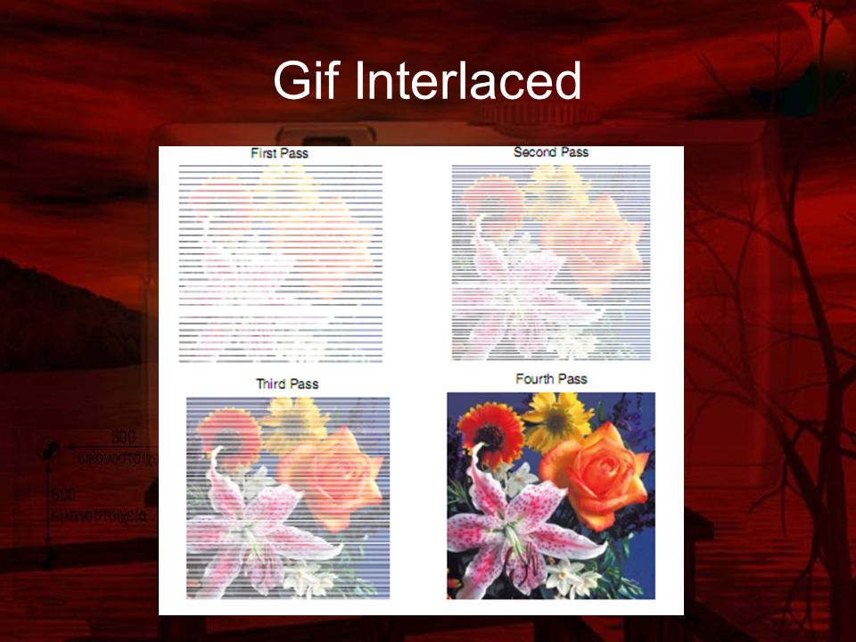 Gif Interlaced