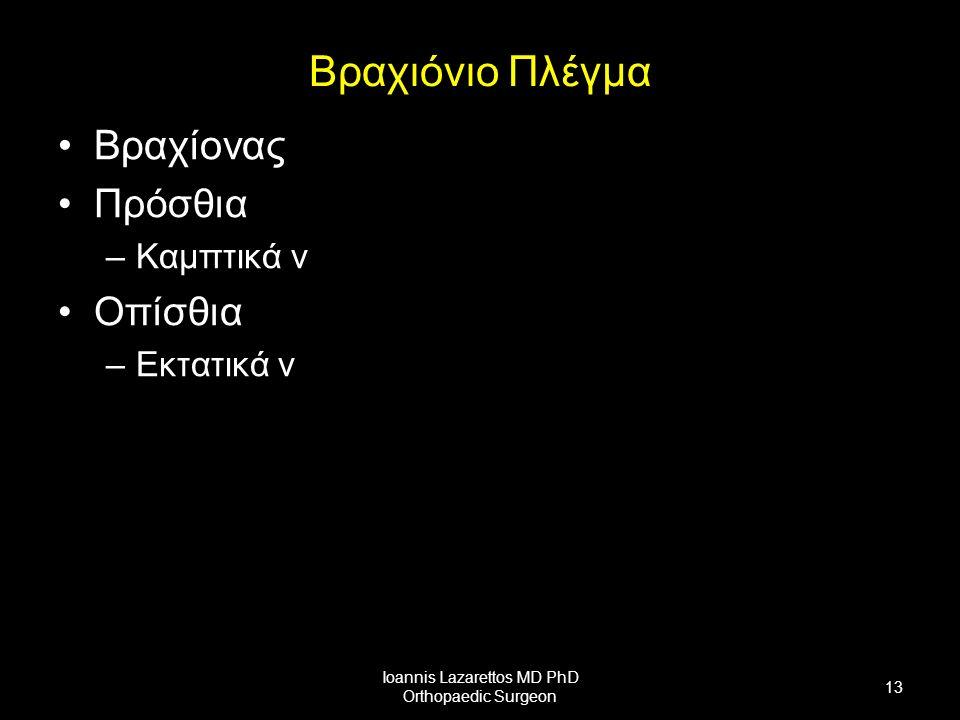 Βραχιόνιο Πλέγμα Βραχίονας Πρόσθια –Καμπτικά ν Οπίσθια –Εκτατικά ν Ioannis Lazarettos MD PhD Orthopaedic Surgeon 13