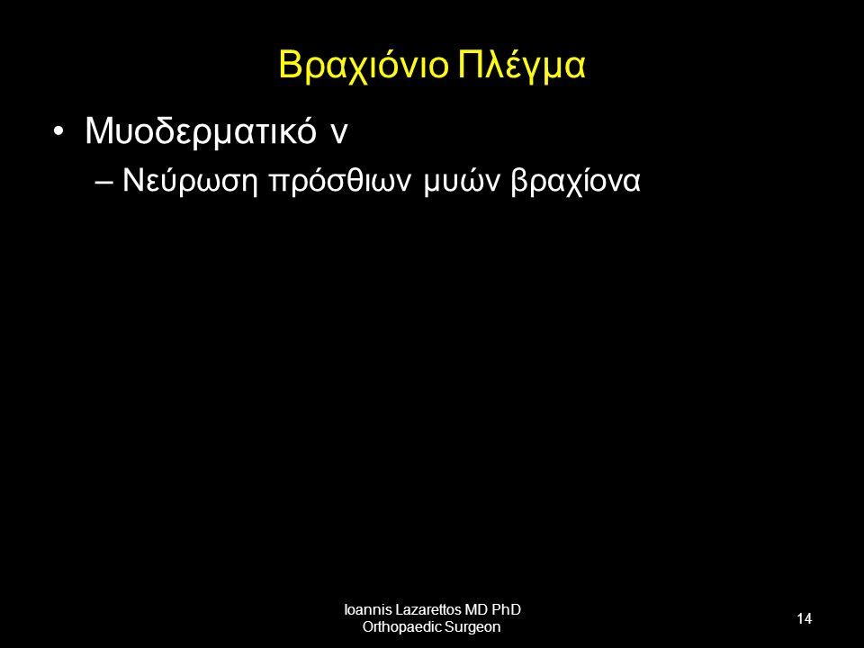 Βραχιόνιο Πλέγμα Μυοδερματικό ν –Νεύρωση πρόσθιων μυών βραχίονα Ioannis Lazarettos MD PhD Orthopaedic Surgeon 14