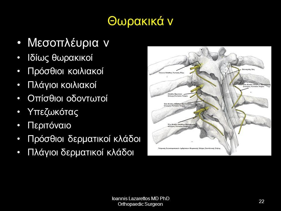 Θωρακικά ν Μεσοπλέυρια ν Ιδίως θωρακικοί Πρόσθιοι κοιλιακοί Πλάγιοι κοιλιακοί Οπίσθιοι οδοντωτοί Υπεζωκότας Περιτόναιο Πρόσθιοι δερματικοί κλάδοι Πλάγιοι δερματικοί κλάδοι Ioannis Lazarettos MD PhD Orthopaedic Surgeon 22