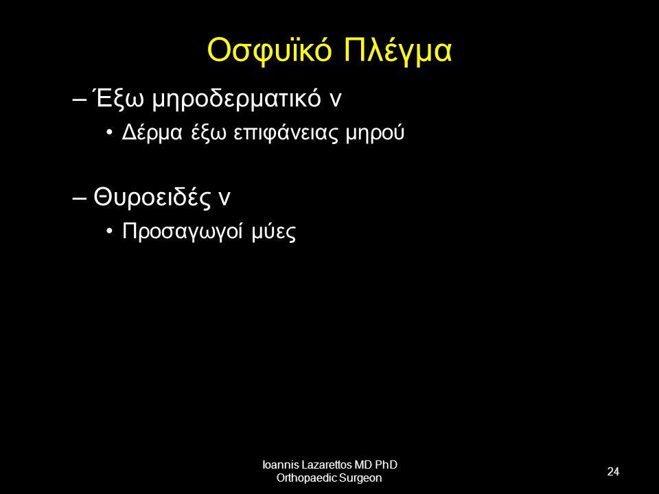 Οσφυϊκό Πλέγμα –Έξω μηροδερματικό ν Δέρμα έξω επιφάνειας μηρού –Θυροειδές ν Προσαγωγοί μύες Ioannis Lazarettos MD PhD Orthopaedic Surgeon 24